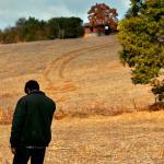 Ahlat Ağacının Oscar'a uzanan yolu