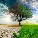 Yasalaşan 'çevrenin korunma teklifini' 11 maddede anlama kılavuzu