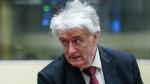 Terörist Tarrant'ın 'ilham aldığı' 'Bosna Kasabı' Karadzic için karar verildi