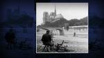 Notre Dame Katedrali iki cihan harbinden 'başarıyla' çıkmıştı