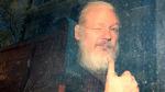 WikiLeaks'in kurucusu Assange'a 50 haftalık hapis cezası