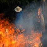 Güney Amerika yanıyor: Her dakika bir futbol sahası büyüklüğünde alan yok oluyor