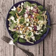 Taze Rezeneli Semizotu Salatası