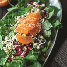 Filizlenmiş Maş Fasulyeli Roka Salatası