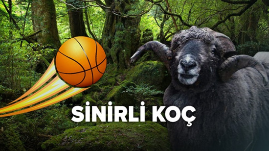 Sinirli koç basketbol topuna karşı