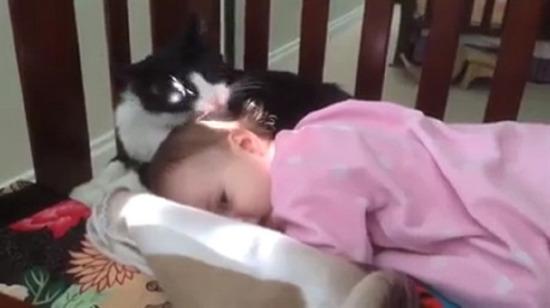 Kedi ve bebeğin olabileceği en samimi hal!