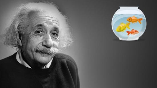 Einstein'ın balık bilmecesi: İnsanların yalnızca yüzde 2'si çözebiliyor