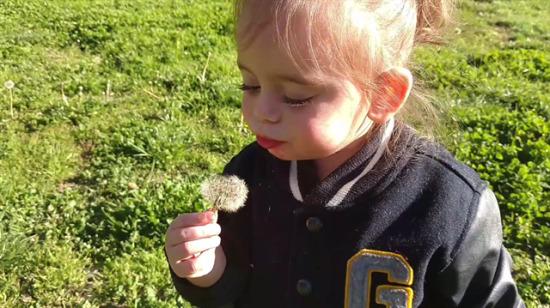 Küçük kız VS karahindiba çiçeği!