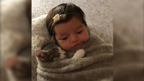Yastığını minik dostuyla paylaşan sevimli bebek!