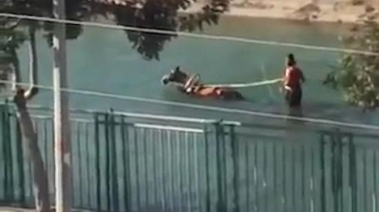 Adana'da sıcaklar başladı: Faytonu kanala soktu