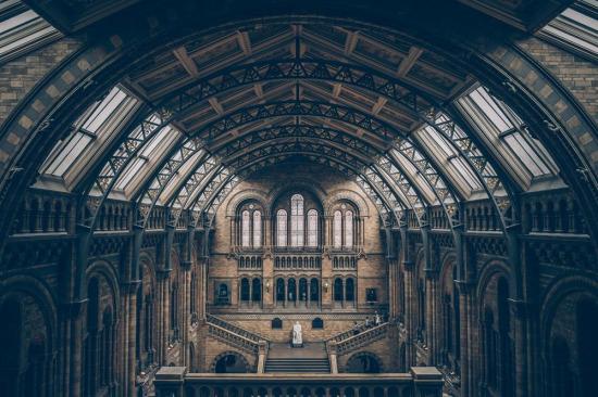 İngiltere'nin ihtişamlı yapılarından olan, Londra Doğa Tarihi Müzesi