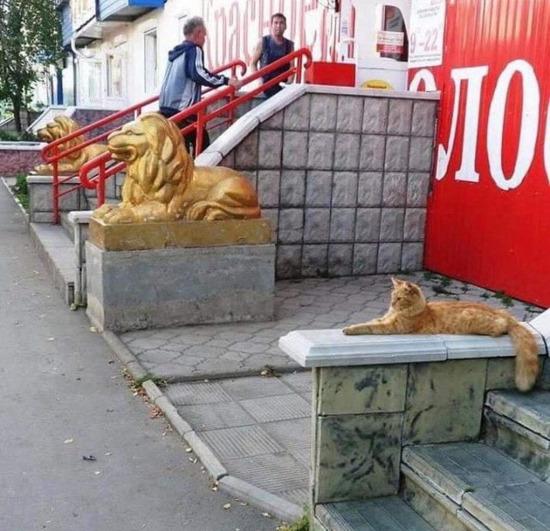 Hangisi heykel?