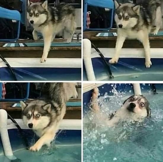 Yüzme bilmediğimi unutmuşum