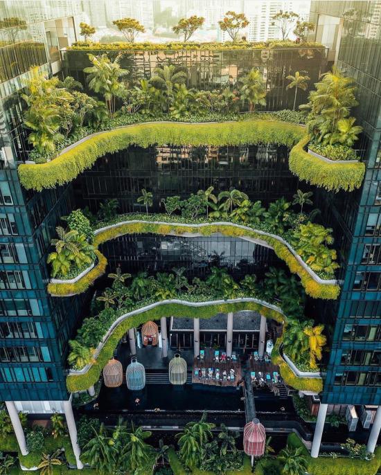 Yeşiller arasında Singapur