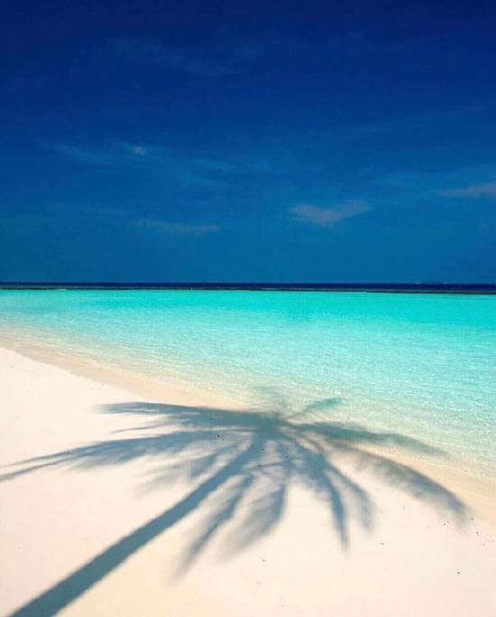 Berrak deniziyle Maldivler