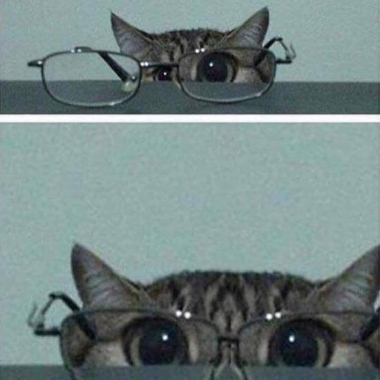 Yakın gözlüğümü aldım