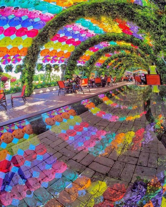 Dubai'nin mucize bahçesi