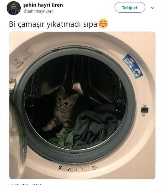 Kediye sen rahat vermemişsin gibi...