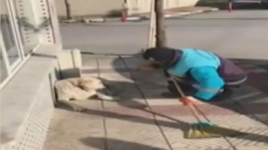 Sokak köpeğine şarkı söyleyen çöpçü fenomen oldu!