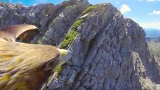 Bir kartalın gözünden İsviçre Alpleri