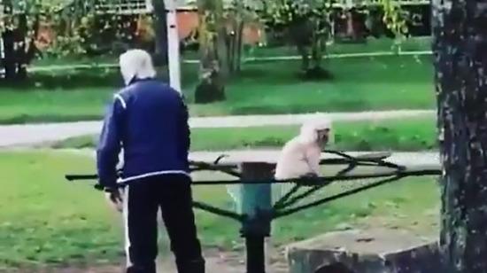 Köpeği çocuk gibi parkta oynatan amca