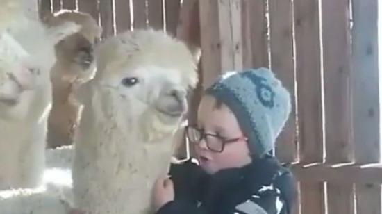 Çocuklarınıza hayvan sevgisi aşılayın