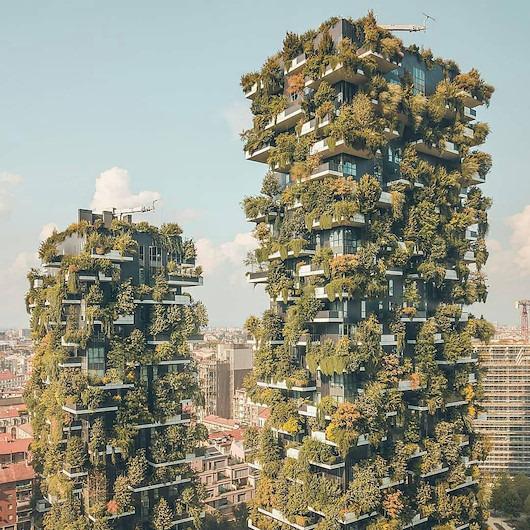 Metropolün ortasında ağaçlarla çevrili evler