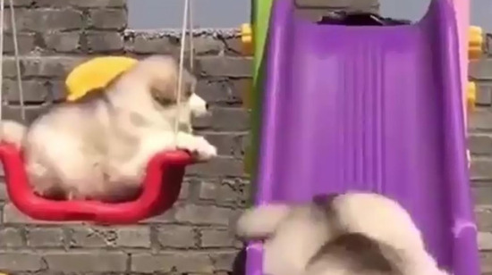 Koca bebek kaydıraktan kayıyor