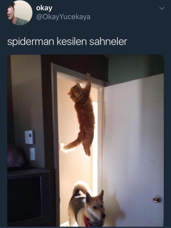 Spiderman kesilen sahneler