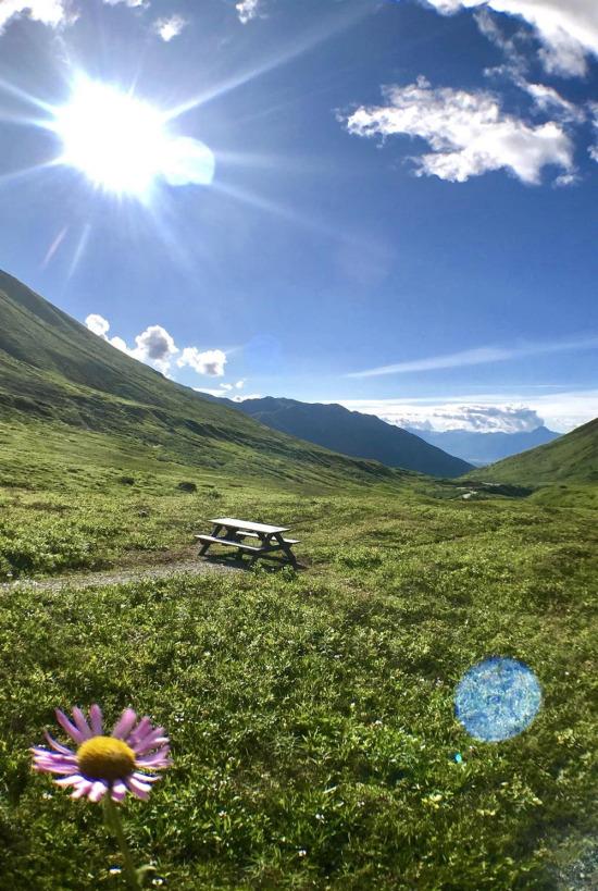 Alaska çok güzel bir şeysin