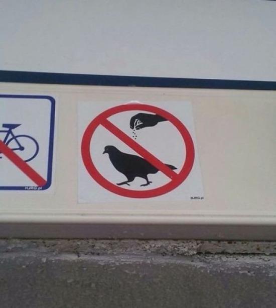 Lütfen kuşları Nusretlemeyin