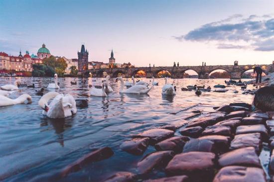 Charles Köprüsü, Prag, Çekya.