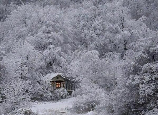 Japonya'da kış