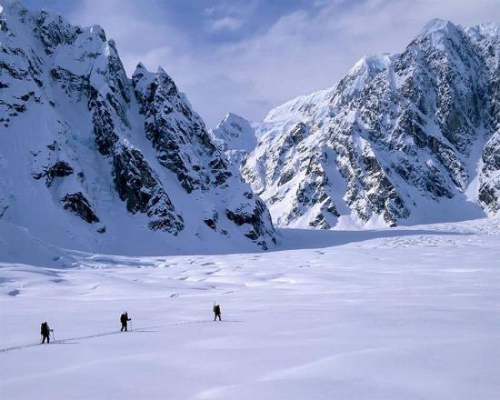 Denali Milli Parkı, Alaska