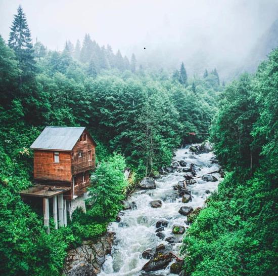 Doğa ve yeşilin büyüsü