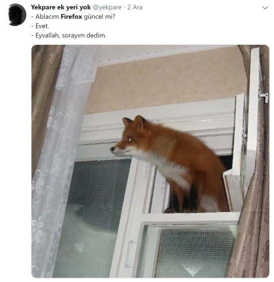 Firefox güncellemelerini tilkiler yapıyor