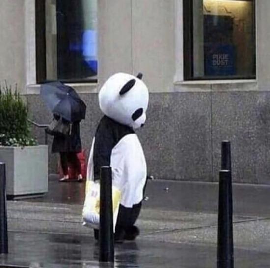 Panda bile olsan seni üzen birileri oluyor