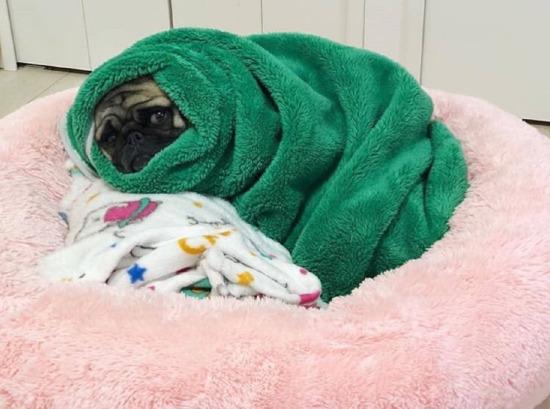 Duş sonrası aynı böyleyim