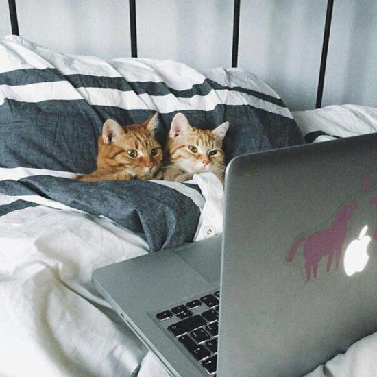 Film izliyoruz