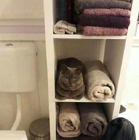 Saklanıyorum ben sakın yerimi söyleme