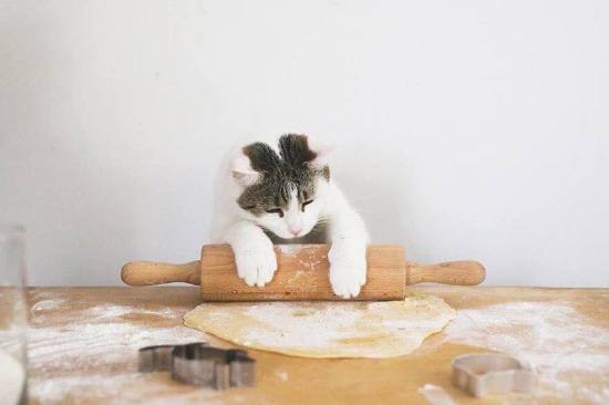 Gel guzum börek yapayım sana