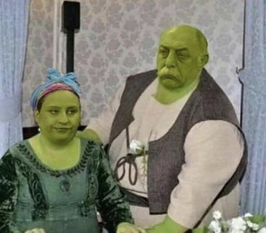 Yerli Shrek ve Fiona