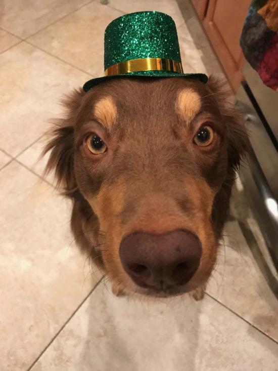 Partiye hazır mıyız?