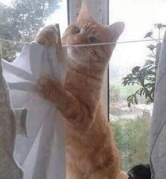 Gerçekleştiremediğim hayallerime en çok çamaşır asarken üzülüyorum