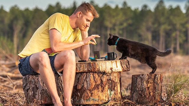 Üç yıllık karavan yolculuğuna eşlik eden gezgin kedi Willow