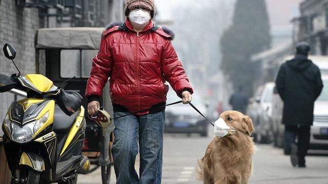 Avrupa'da hava kirliliği '800 bin kişi ölüyor'