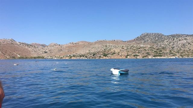 Marmaris'te tur teknesi battı: Ölü ve yaralılar var