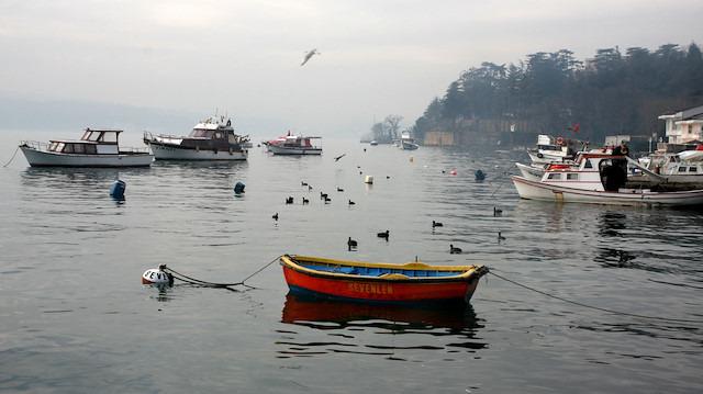 Gezi rotanızı oluşturuyoruz: İstanbul'da doğayla iç içe bir gün geçirin