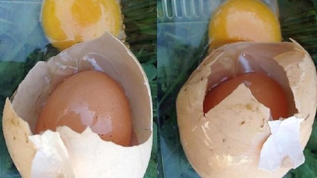 Yumurtadan çıkan 'yumurta' görenleri hayrete düşürdü
