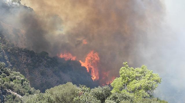 İzmir ve Muğla'da orman yangını: Uçaklar inemiyor
